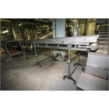 """~20 ft. 6"""" L S/S Inspection Conveyor System, with 34"""" W Belt, S/S Siderails with Side Gate, Sparks"""