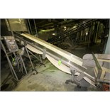 """~13 ft. L S/S Inclined Conveyor System, with 18"""" W Intralox Belt with 12"""" Flights, S/S Siderails,"""