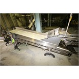 """~11 ft. 7"""" L S/S Inclined Inspection Conveyor System, with 34"""" W Belt with 18"""" Flights, S/S"""