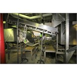 """~8 ft. 5"""" S/S Inclined Belt Conveyor System with 20"""" W Belt with Flights & Siderails, (Note: Power"""