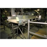 "~11 ft. L Belt Conveyor System with 34"" W Belt, Dura Drive Power Roller Driven, Side Rails,"