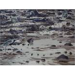 Darren Woodhead b.1971, 'Grey plover & dunlin, low water, Musselburgh', watercolour, signed and