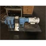 "WCB Positive Displacement Pump, Model 224-U1, Mounted on S/S Skids, U1 224, 316LSS, 4.0"" S-LINE"