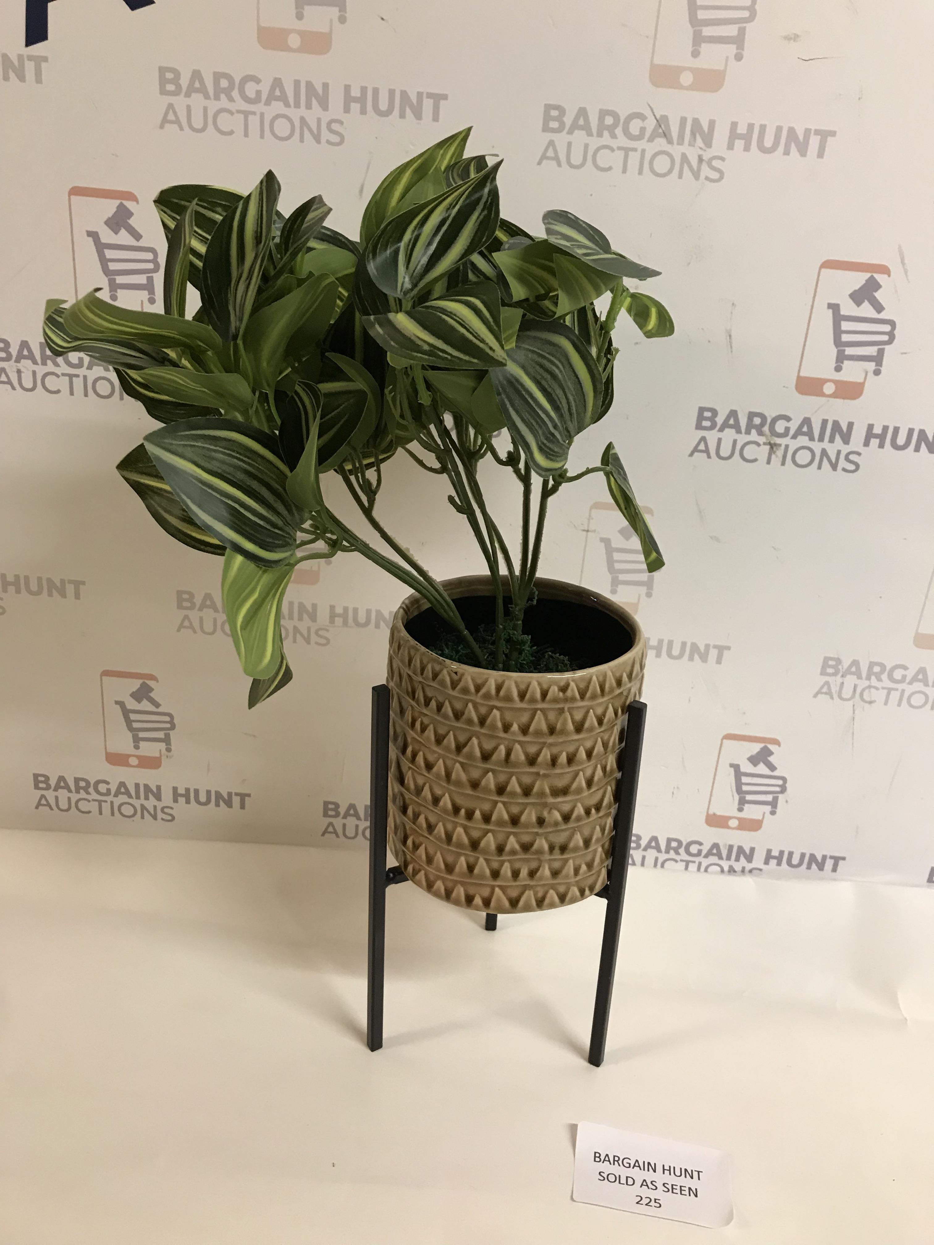 Lot 225 - Plant on Legs