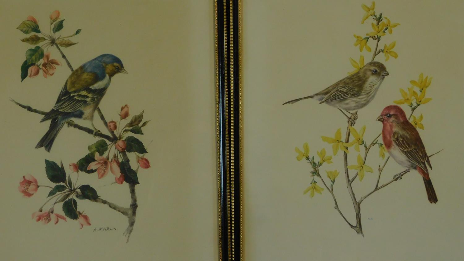 A miscellaneous collection of eleven framed and glazed prints of avian and architectural interest. - Image 3 of 7