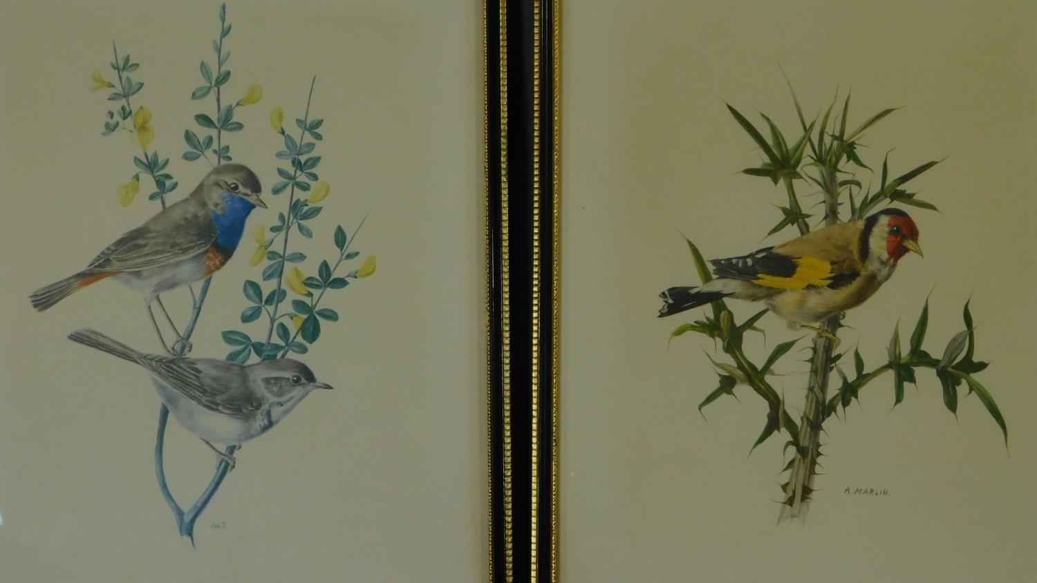 A miscellaneous collection of eleven framed and glazed prints of avian and architectural interest. - Image 2 of 7