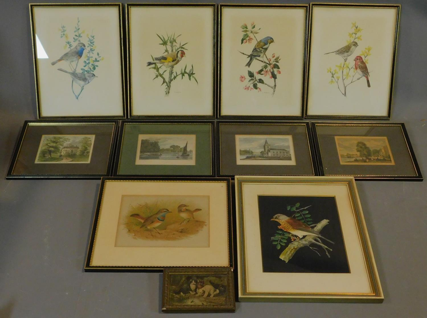 A miscellaneous collection of eleven framed and glazed prints of avian and architectural interest.