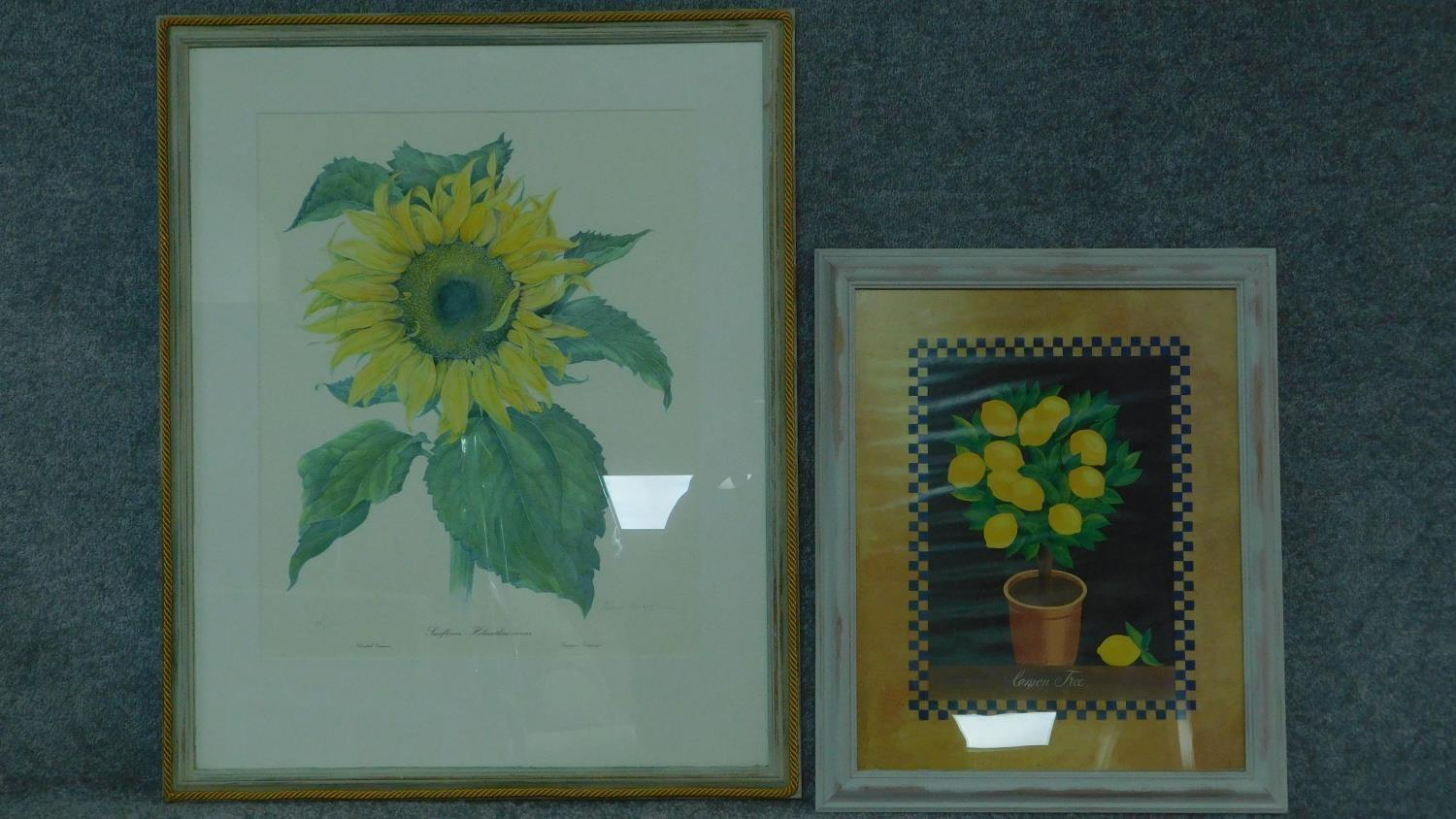 Two framed and glazed prints, sunflower and lemons. 82x67 (largest)