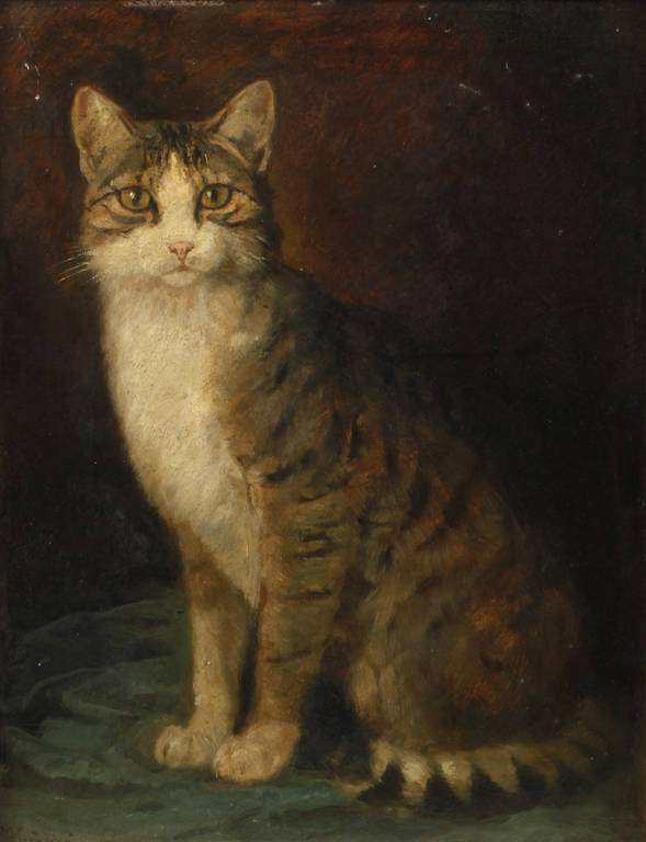 Lot 4611 - Wilhelm Gräbhein, Katzenportrait Bildnis einer grau getigerten Katze vor dunklem Grund, gekonnt