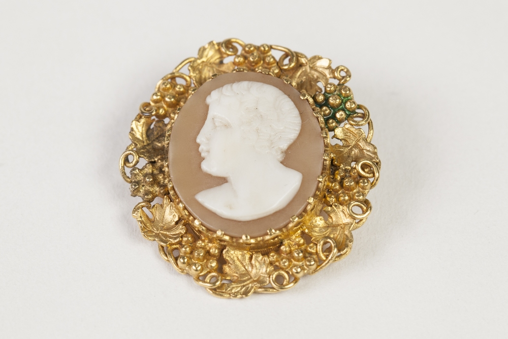 Lot 57 - ANTIQUE SHELL CAMEO BROOCH, carved with a classical male head, in ornate giltmetal frame, pierced