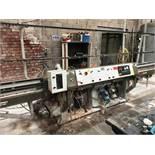 Schiatti Angelo FPS-15 RS Straight Line Grinding Machine | YOM: 2005