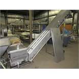 "Stainless Steel Incline Conveyor, on swivel, 20"" W X 13' L flighted belt, 102"" discharge, stainless;"