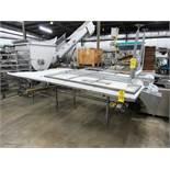 "Stainless Steel Trim Conveyor, 75"" W X 18' L X 40"" T, 24"" wide center belt, 24"" W poly work stations"