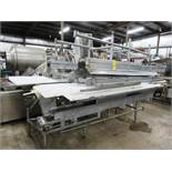 "Stainless Steel Boning Conveyor, 78"" W X 25' L X 40"" T,; 24"" wide center belt, 24"" W poly work"