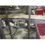 Belt conveyor, blue sanitary belt, 120 in. long x 30 in. wide x 48 in. tall, SS frame, with