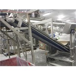 Incline sanitary blue belt conveyor, 154 in. long x 31 in. wide, SS frame, with drive   __This