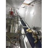 Overhead conveyor, blue sanitary belt, 37 ft. long x 12 in. wide, SS frame, with drive   __This item