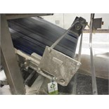 Belt conveyor, blue sanitary belt, 10 ft. long x 52 in. wide, SS frame, with drive   __This item