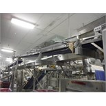 Overhead belt conveyor, blue sanitary belt, 16 ft. long x 12 in. wide, SS frame, with drive   __This