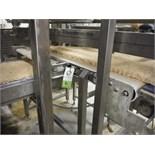 90 degree cross conveyor, white sanitary belt, 50 in. long x 30 in. wide x 48 in. tall, SS frame,