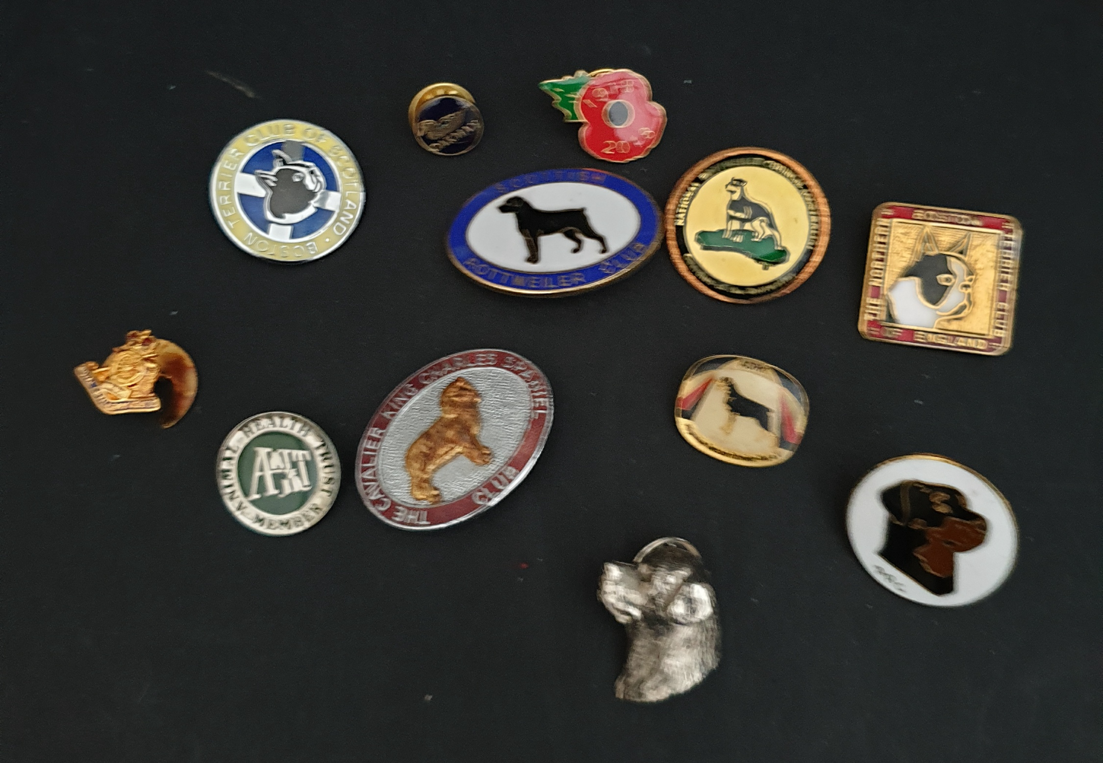 Parcel of 12 Badges and Tie Pins Dogs, Military & Others