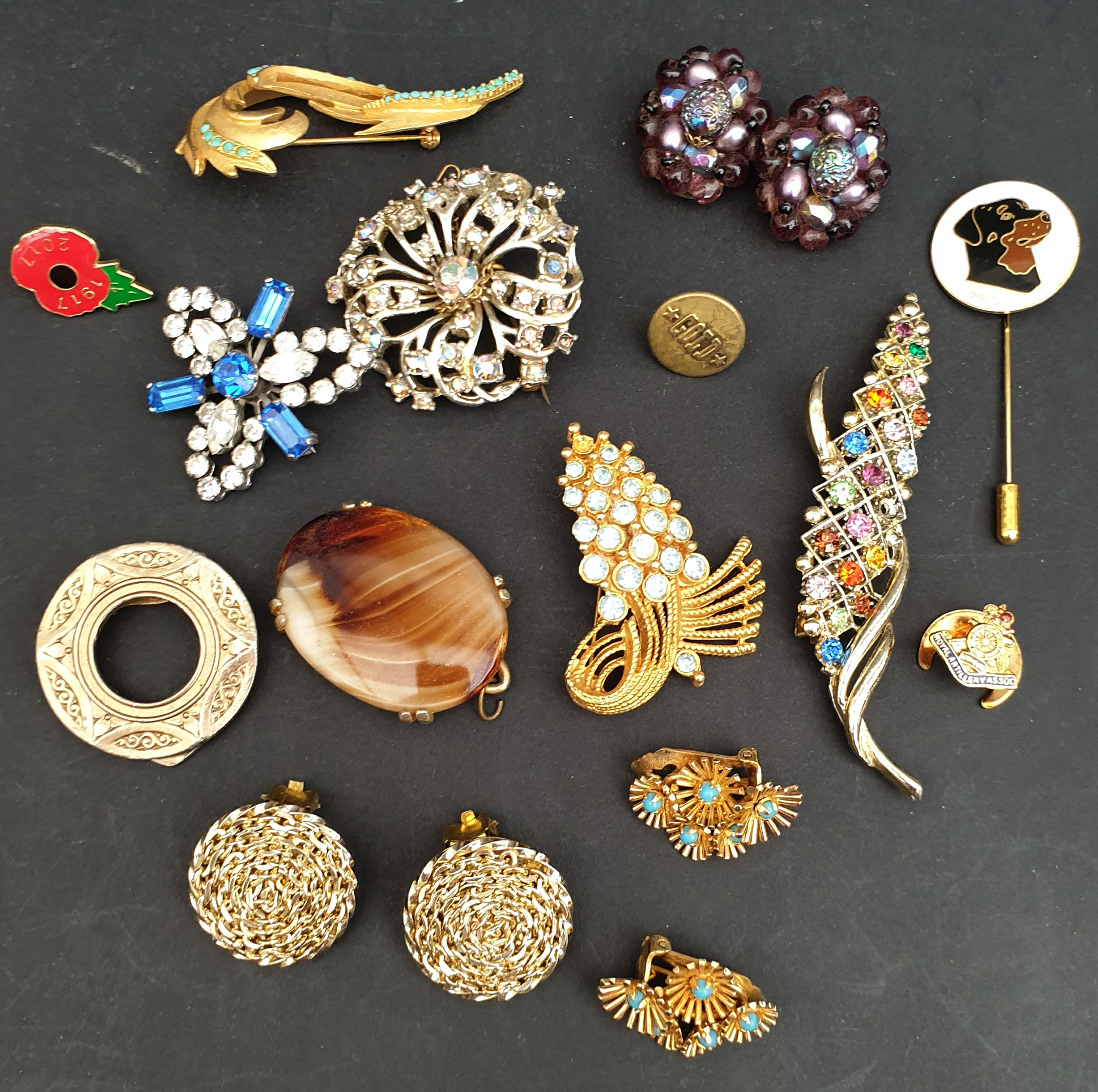 Costume Jewellery Brooches Ear Rings & Badges