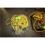 Assorted 3-Plug Lighted Extension Cords
