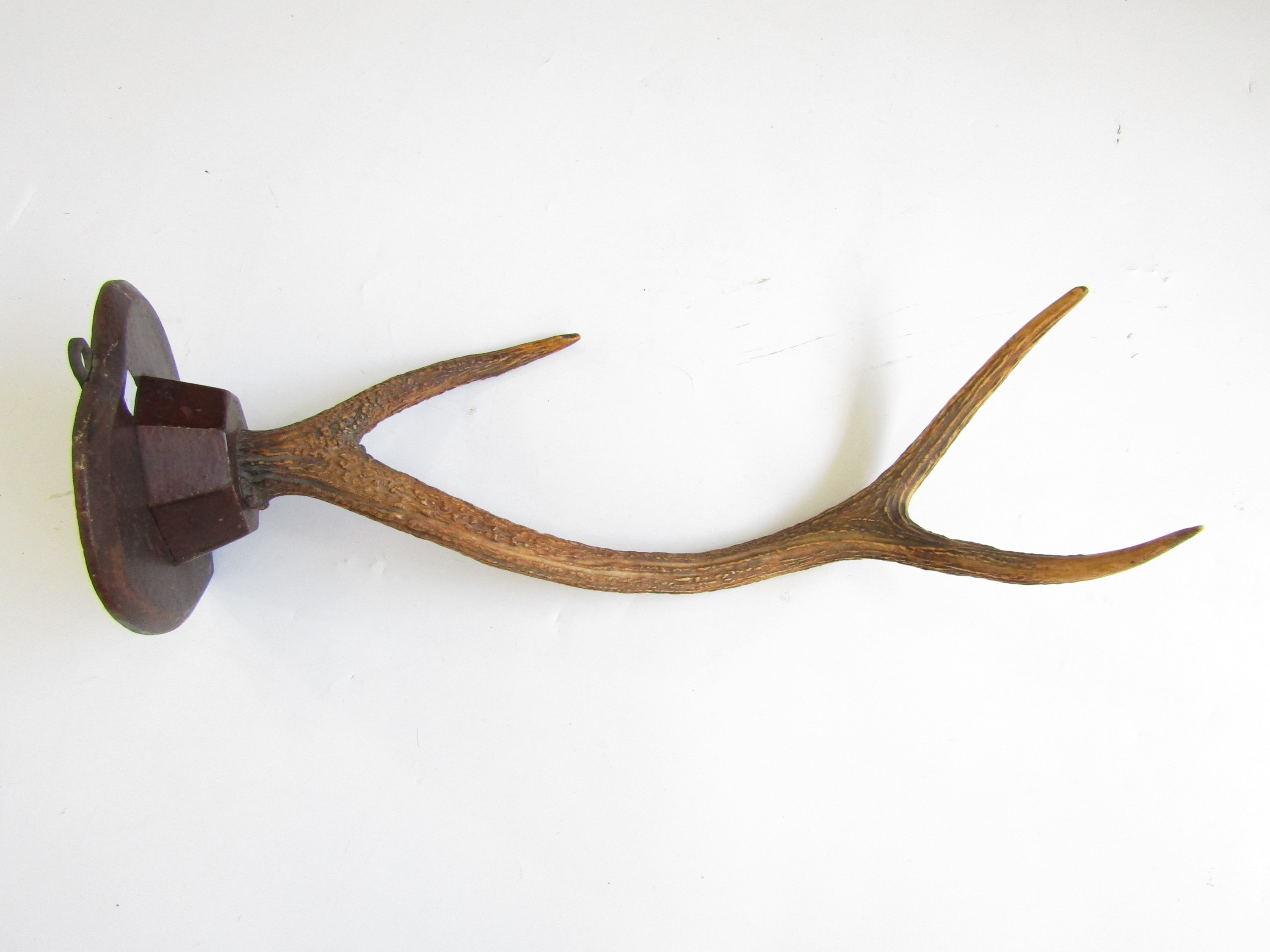 Lot 14 - A late 19th / early 20th Century antler mounted hat and coat hook