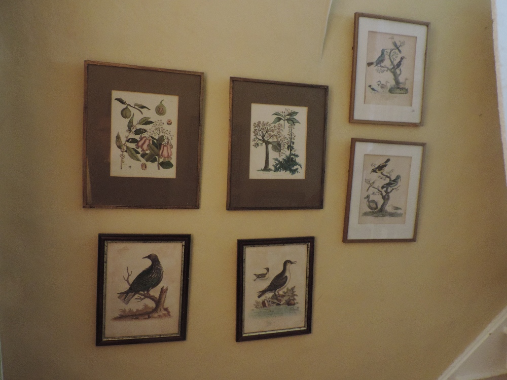 Lot 9 - Hand-coloured Engravings