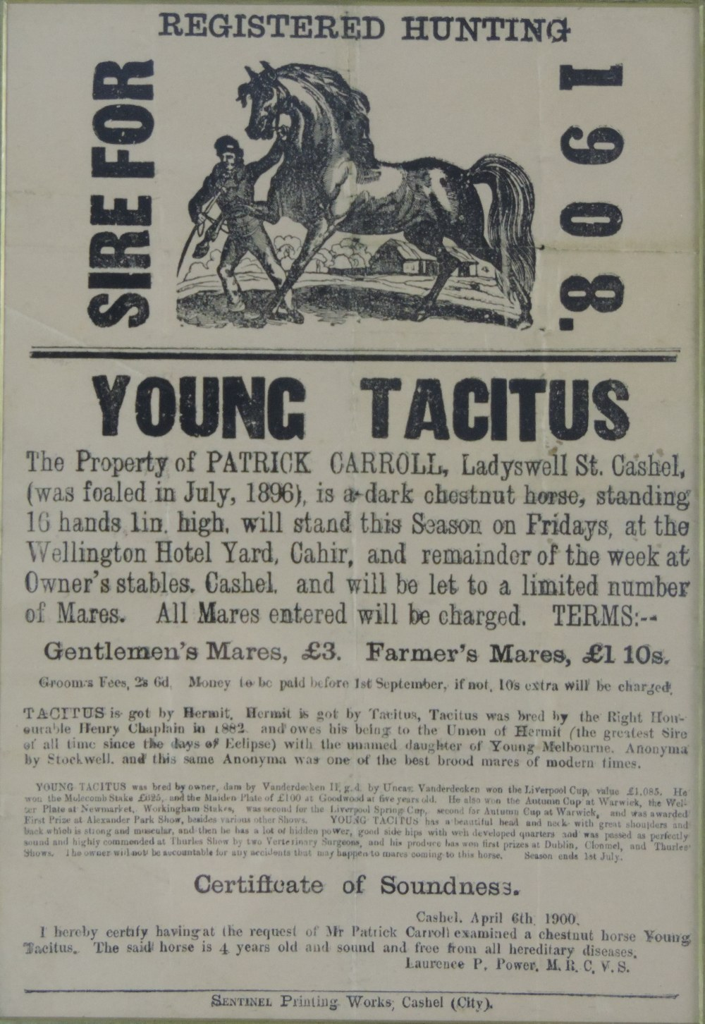 "Lot 46 - Co. Tipperary Stud Poster: ""Young Tacitu"