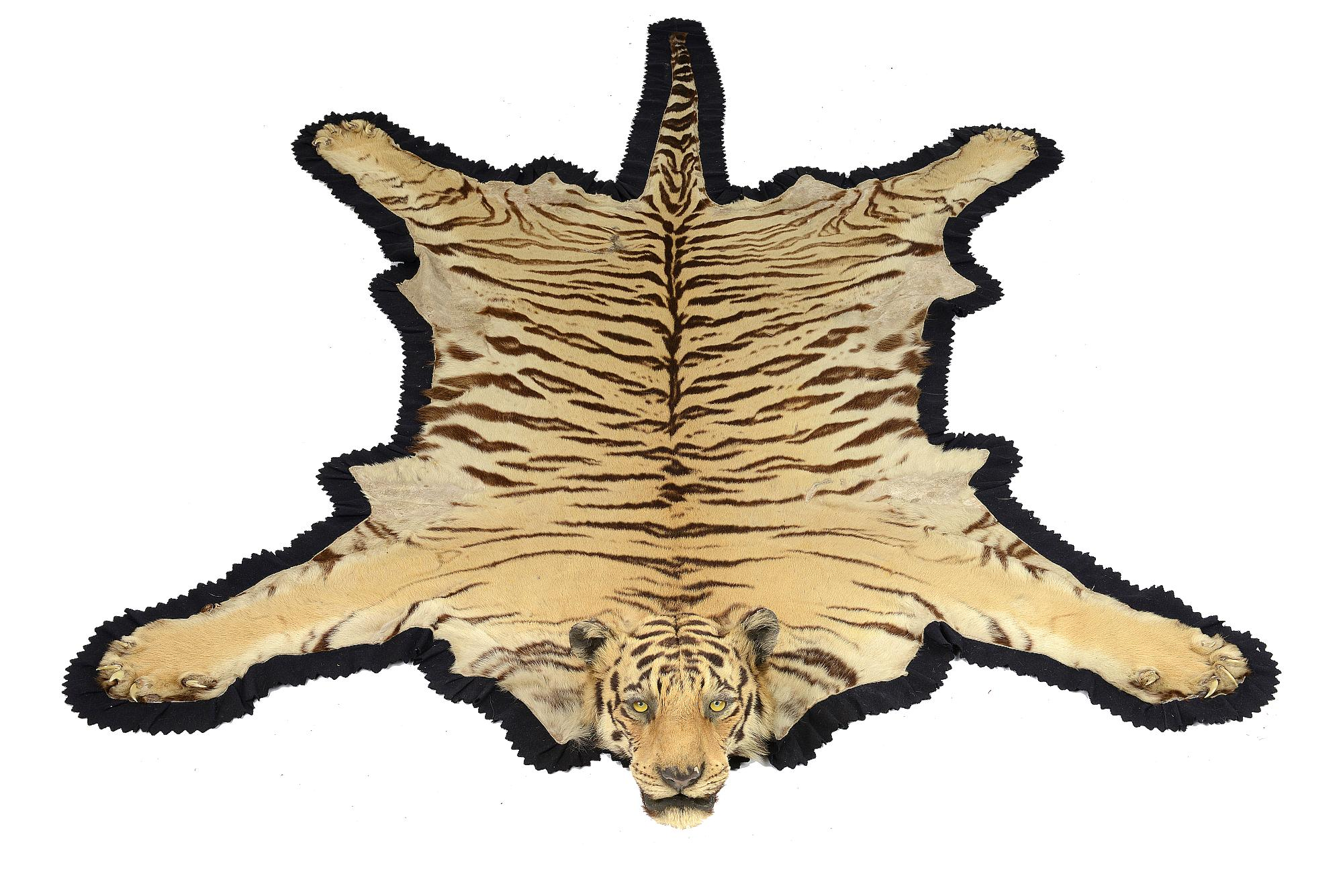 Lot 116   Taxidermy: A Van Ingen And Van Ingen Tiger Skin Rug Circa 1900