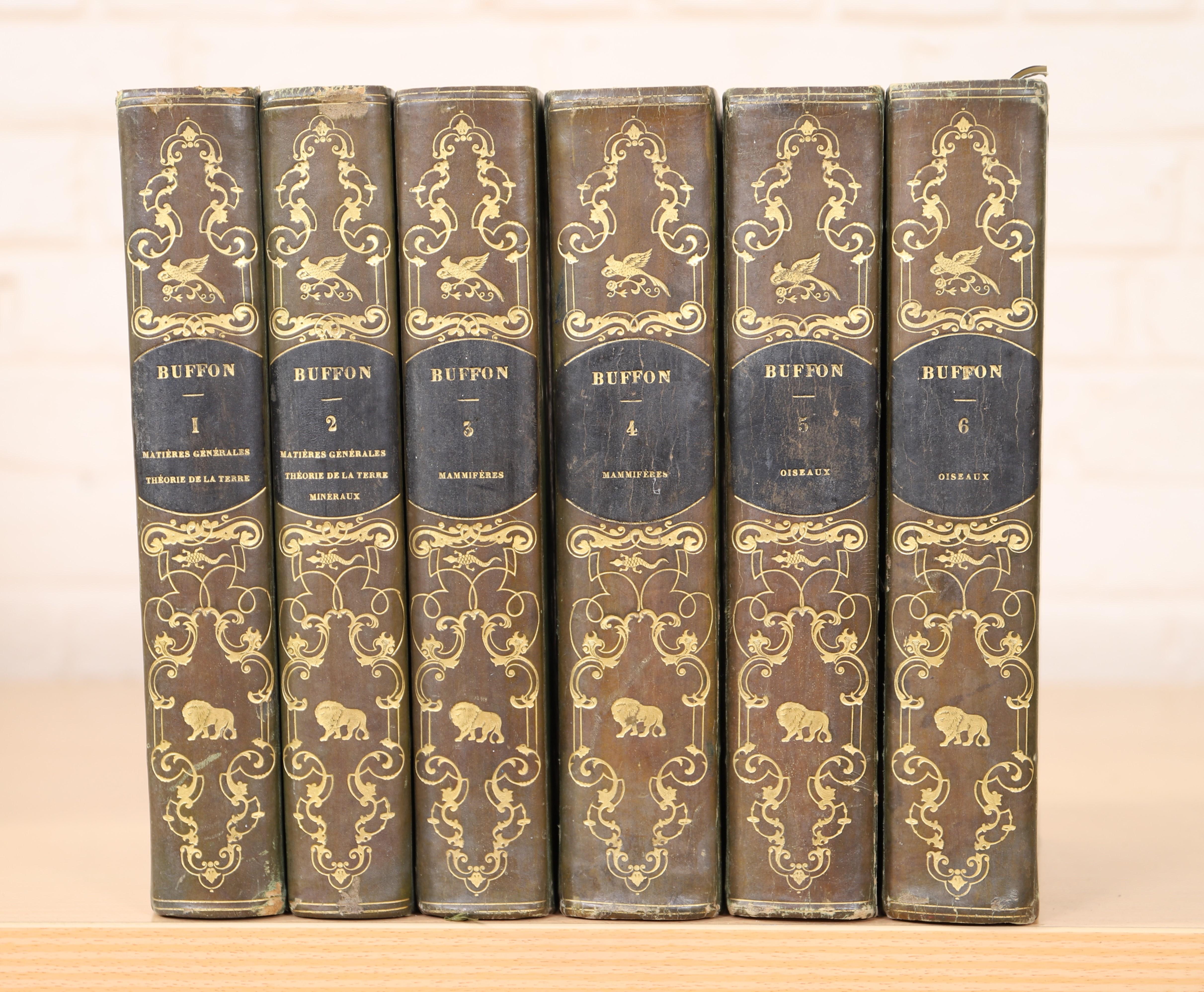 Los 10 - SUITE DE 6 VOLUMES ILLUSTRES DE BUFFON XIXè Comprenant : lla terre, les minéraux, [...]