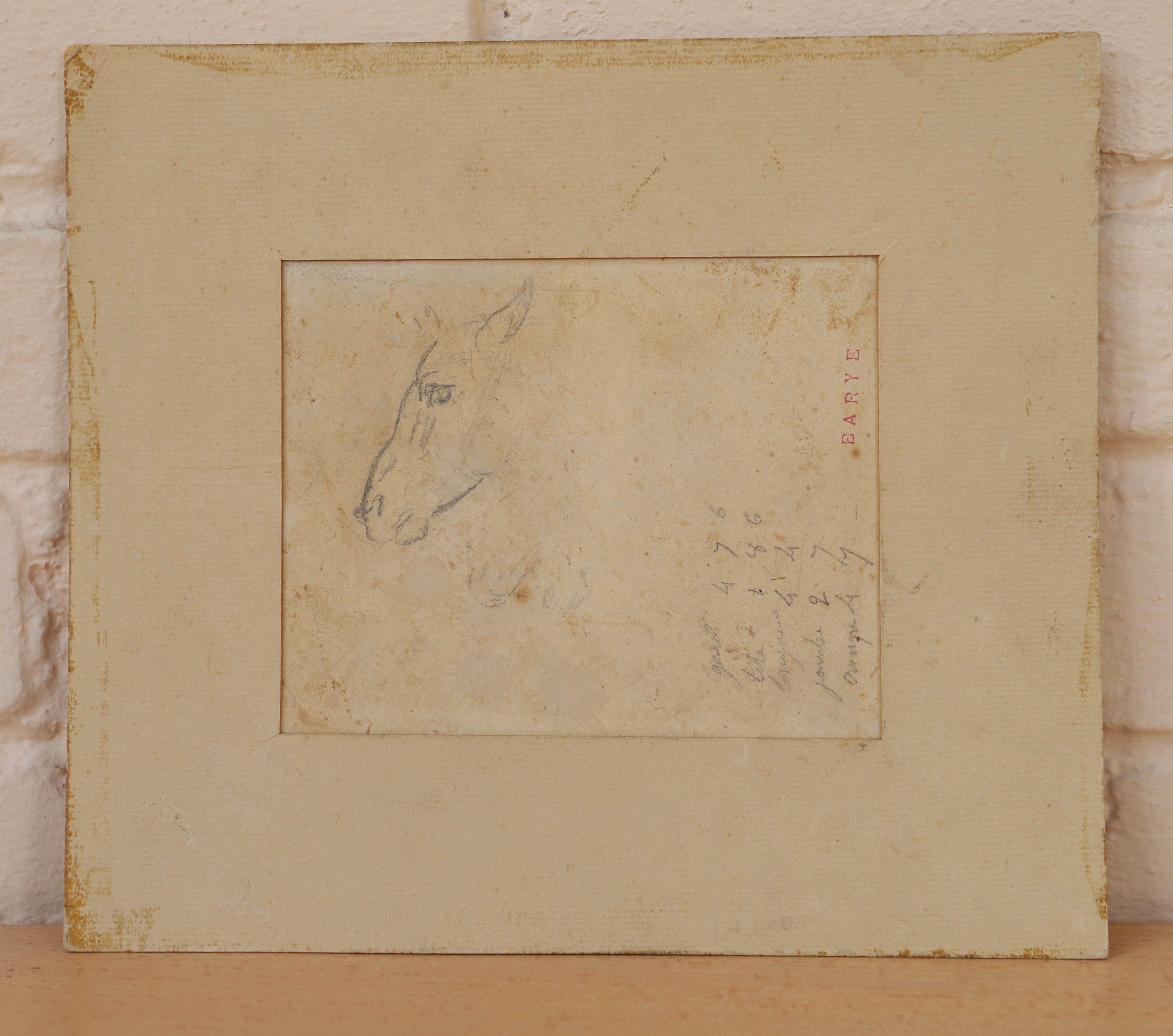 "Los 14 - DESSIN ""ETUDE DE TETE DE CHEVAL"" DE BARYE Crayon sur papier, annoté, portant le [...]"