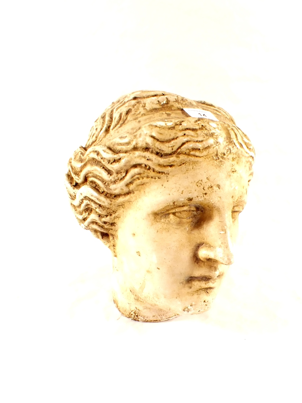 Lot 14 - A classic style plaster head