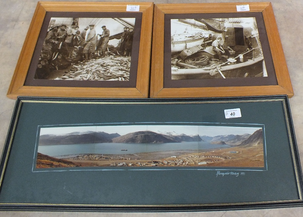 Lot 40 - A photo panoramic view of Baffin Island plus two herring photos