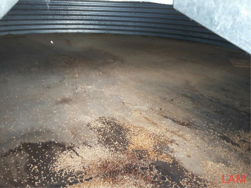 Lot 48 - Bin E4 3000 bu 18 FT x 4-Ring Butler Grain Bin Bin Located in Keg River, for more info contact Ernie