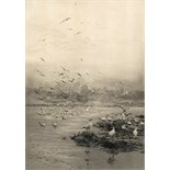 William Lionel Wyllie R.A. (1851-1931) Seagulls at low tide Signed Etching 30 x 21cm; 12 x 8½in ++