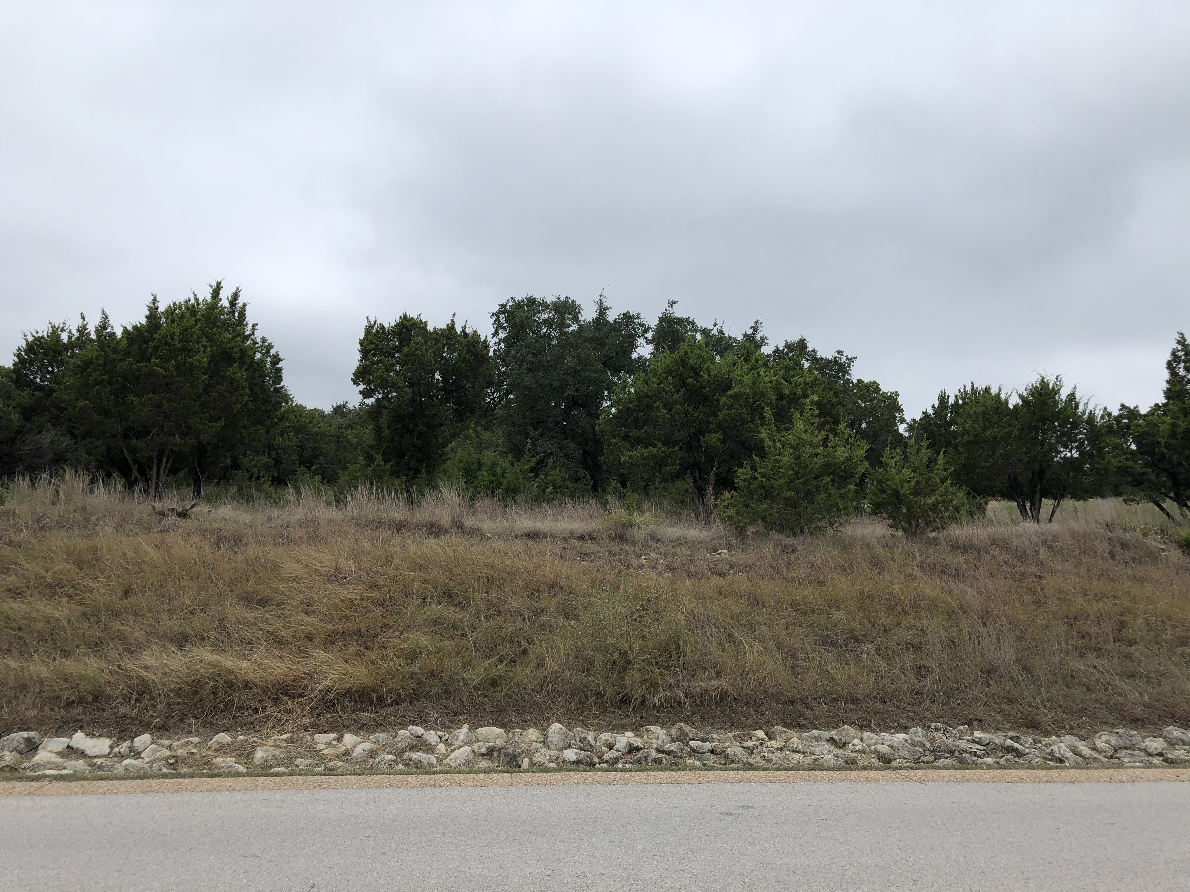 Large Residential Lot in Spicewood - 19809 Flying J - Image 9 of 24