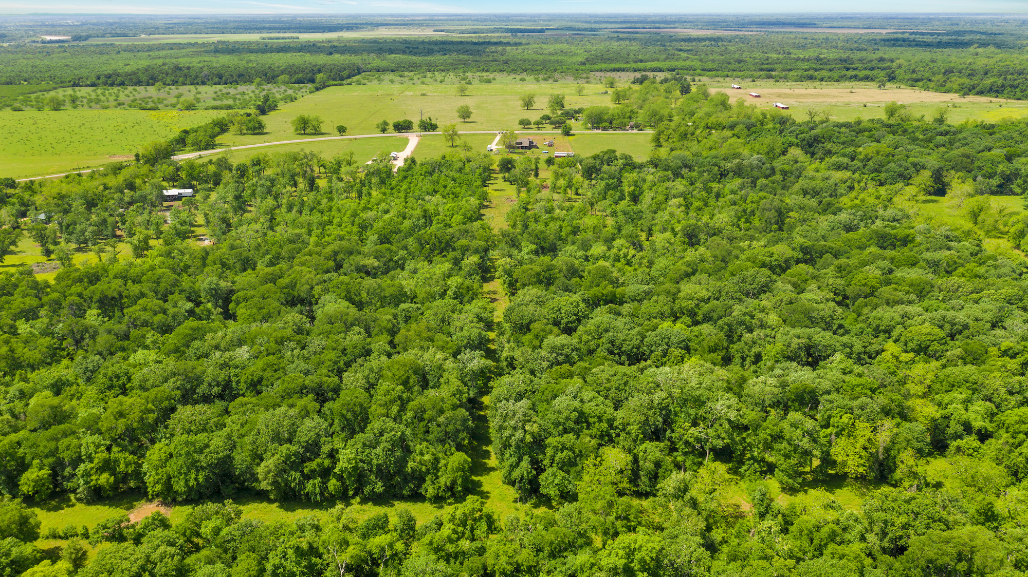 Custom Country Home with Acreage in Sealy - Image 8 of 46