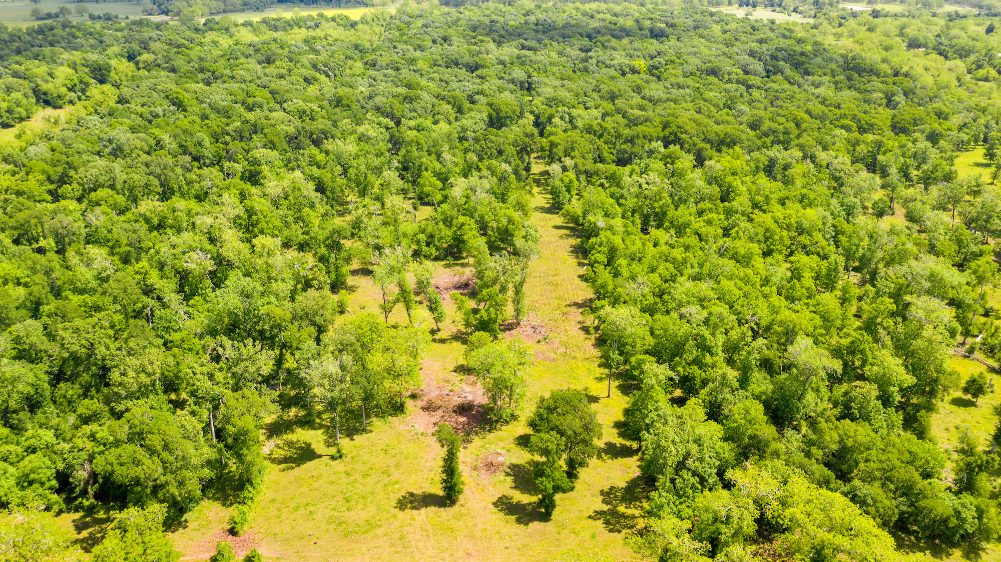 Custom Country Home with Acreage in Sealy - Image 7 of 46