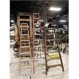 Lot Comprising (3) LOUISVILLE Fiberglass Step Ladders, 12/10/8'
