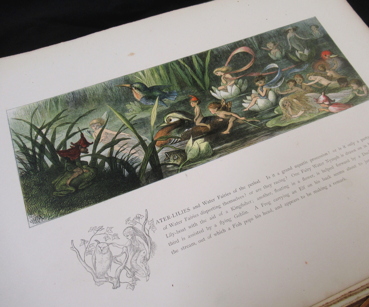 RICHARD DOYLE (ILLUSTRATED) AND WILLIAM ALLINGHAM: IN FAIRYLAND, A SERIES OF PICTURES FROM THE ELF- - Image 5 of 11