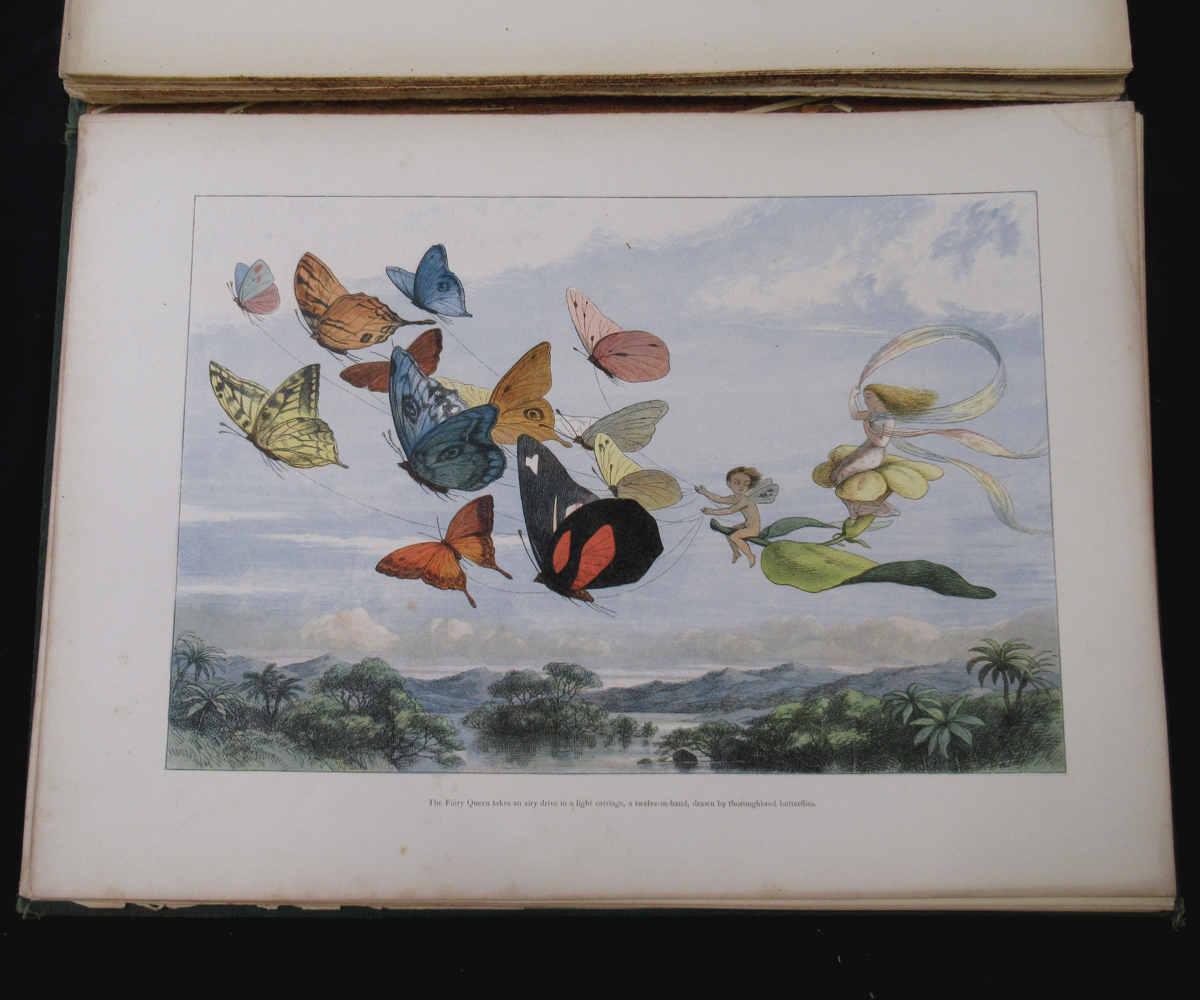 RICHARD DOYLE (ILLUSTRATED) AND WILLIAM ALLINGHAM: IN FAIRYLAND, A SERIES OF PICTURES FROM THE ELF- - Image 10 of 11