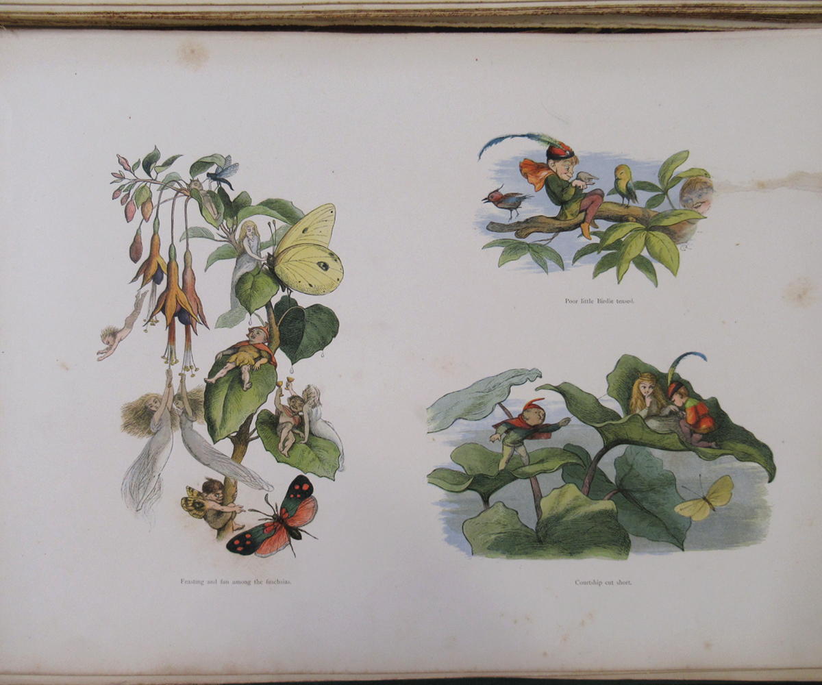 RICHARD DOYLE (ILLUSTRATED) AND WILLIAM ALLINGHAM: IN FAIRYLAND, A SERIES OF PICTURES FROM THE ELF- - Image 7 of 11