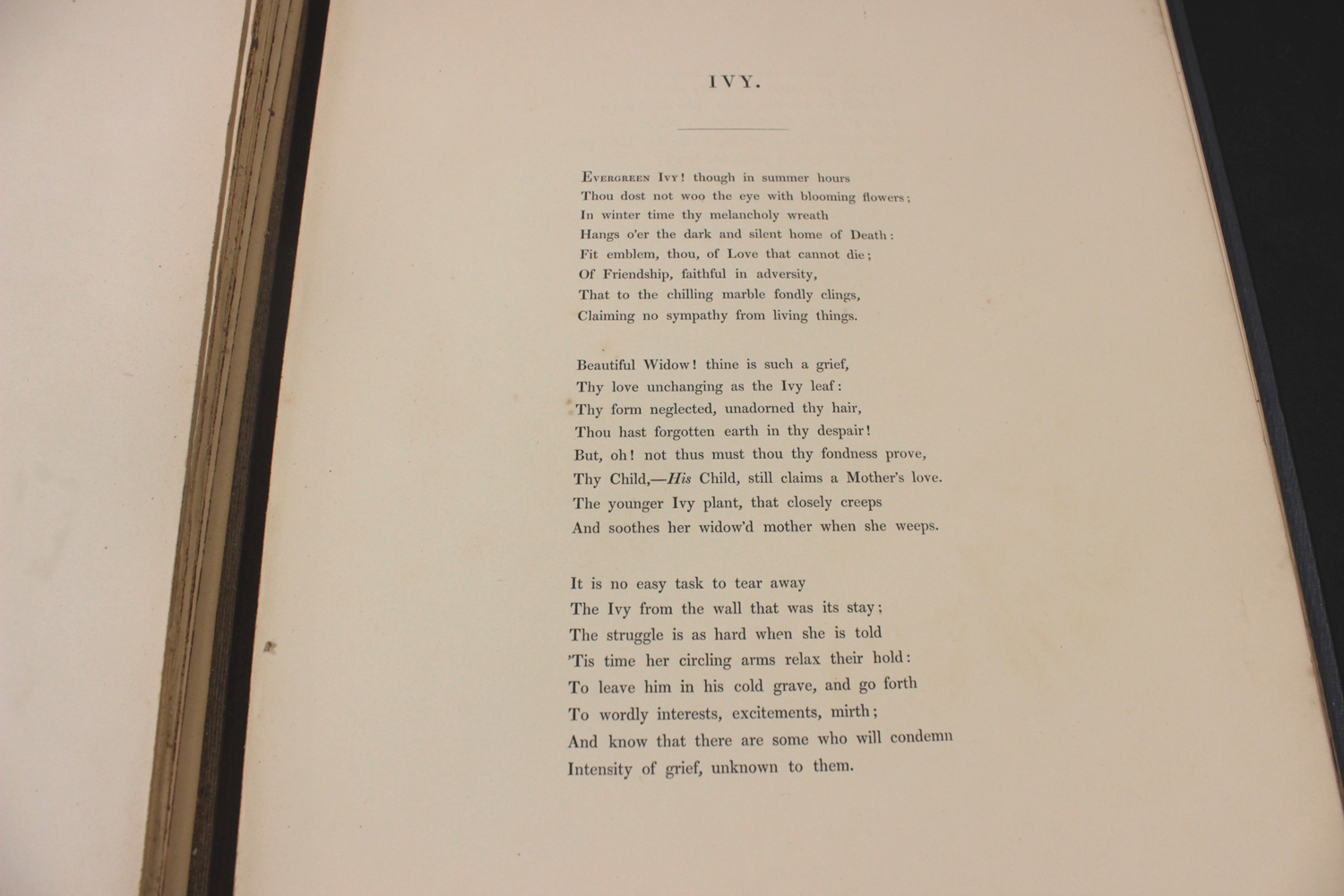 MABEL LUCIE ATTWELL: 2 titles: LUCIE ATTWELL'S ANNUAL, London, Dean, [1945], original cloth backed - Image 7 of 8