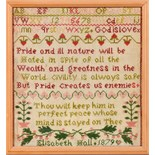 Lot 418 - A 19c needlework sampler by Elizabeth Hall 1879, framed and glazed, 13 x 12