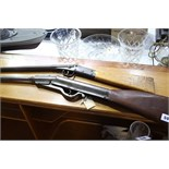 A Jem Air Rifle and a Diana Rifle