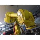 Fanuc Robot 710I