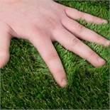 A half Roll of Perfect 30 Artificial Grass, 12.5 meters x 4 meters