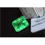 LARGE 14.32CT Emerald with Certificate Card & Laboratory Box